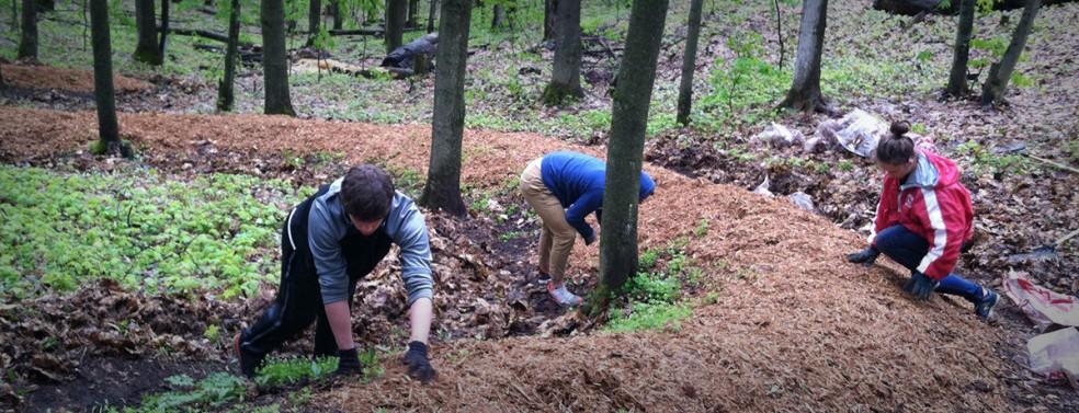Volunteer Football Players work on Serpent