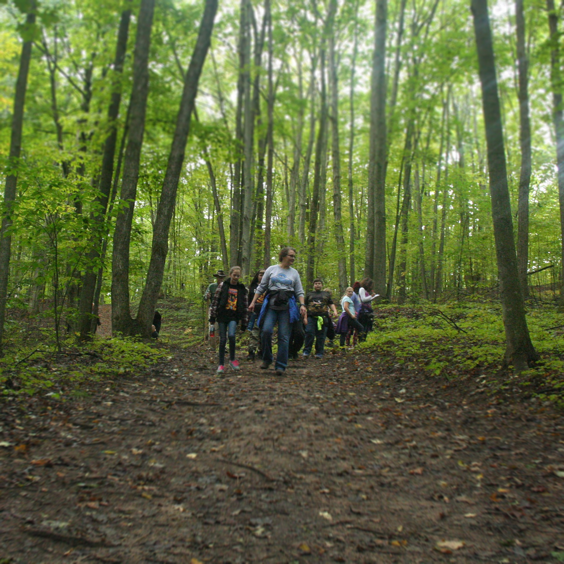 Volunteer to lead tours at Michigan Legacy Art Park.