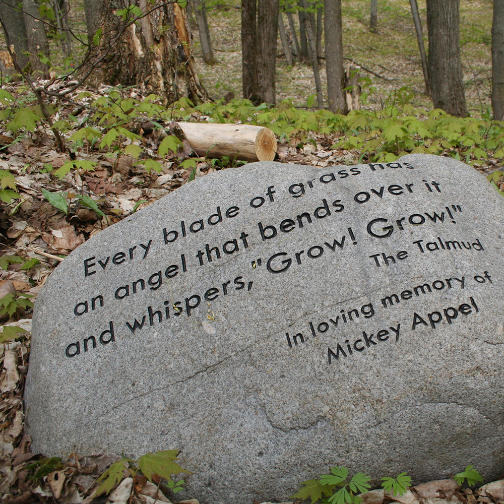 Poetry Stones