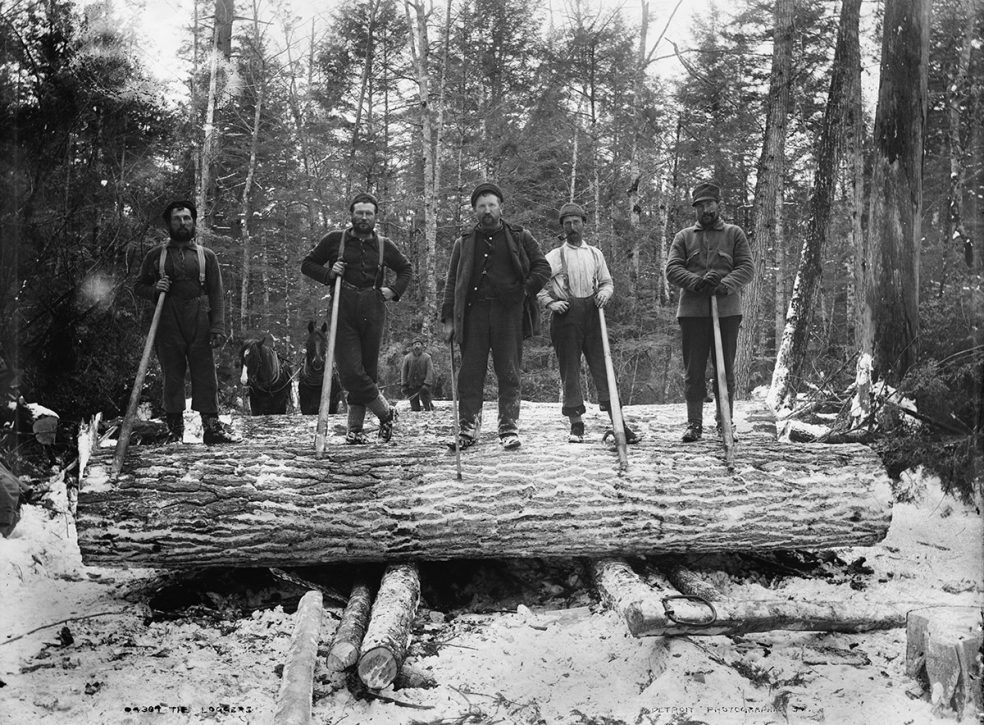 Michigan Loggers