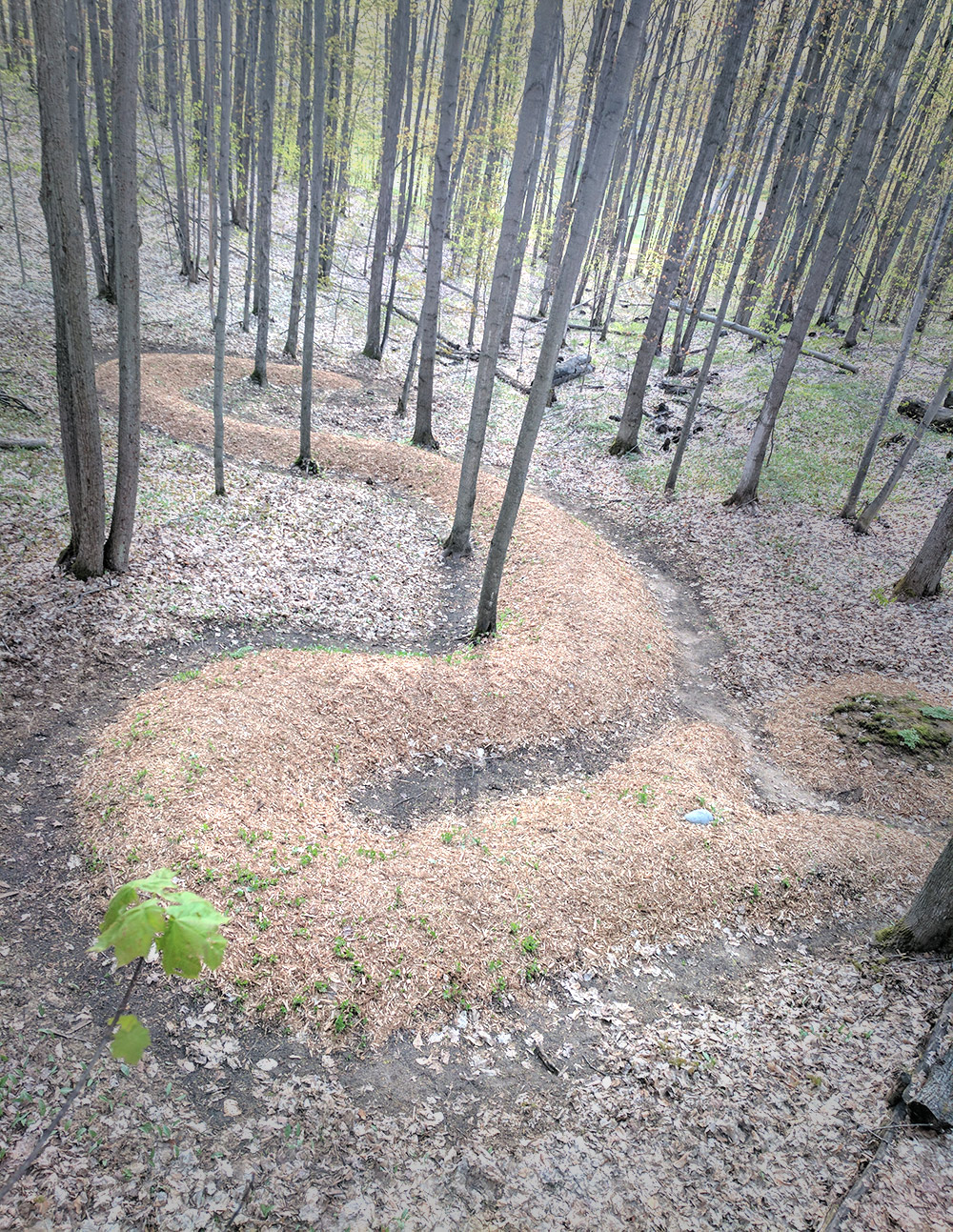 Serpent Mound by Patricia Innis