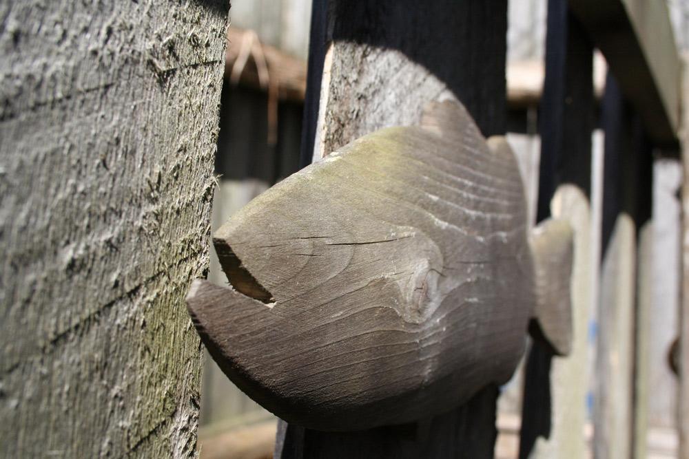 Stockade Labyrinth Fish