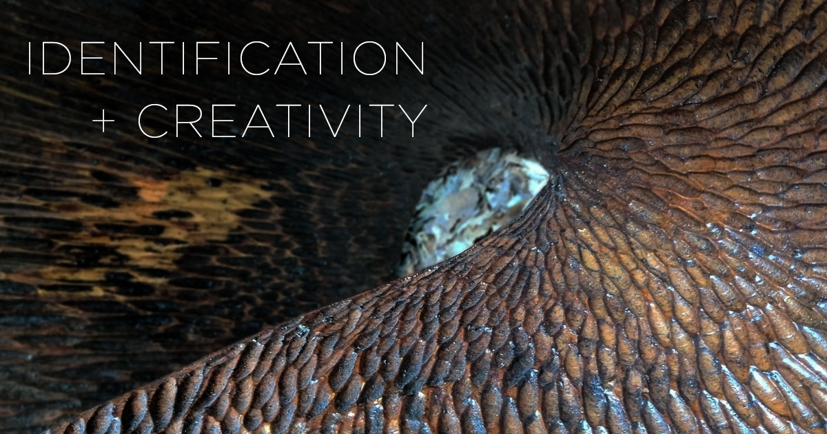 Identification and Creativity