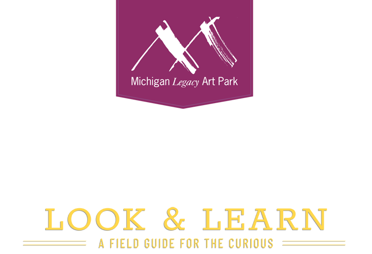 Michigan Legacy Art Park - Look & Learn: A Field Guide for the Curious